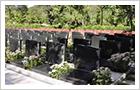 红山寺墓地